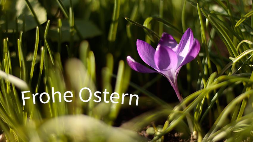 Das team der Sattlerei Lode wünscht frohe Ostern