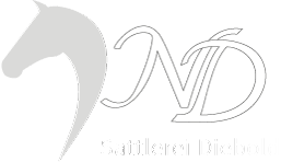 Sattlermeisterin Natalie Lode